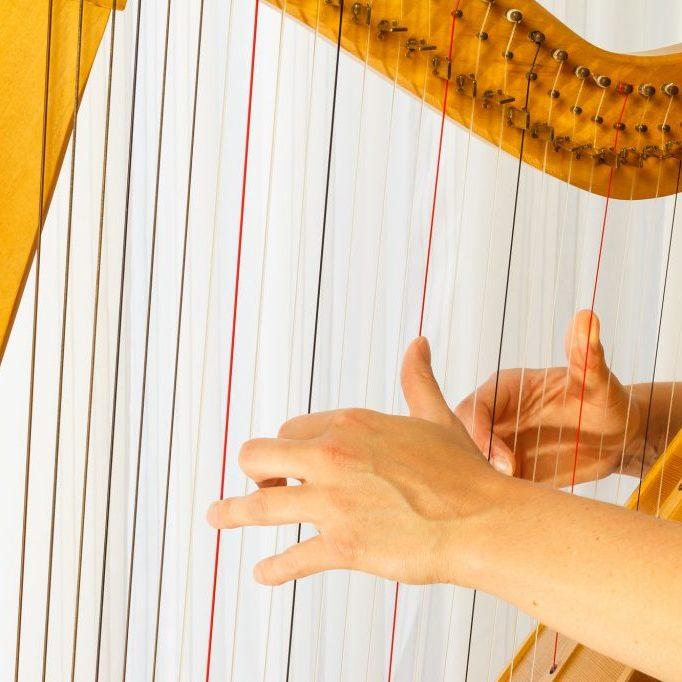 Close up hands playing celtic harp. Fingers are on the snares.
